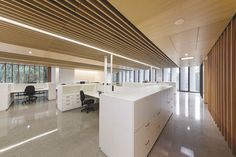At the Australian PlantBank, Mt Annan NSW, SUPAWOOD acoustic, decorative slatted panels in Mountain Ask natural timber veneer have been use extensively throughout many areas of this important conservation facility. Photo © John Gollings
