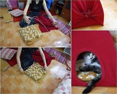 Creative Ideas - DIY Easy Cat Tent from Old T-shirts | iCreativeIdeas.com Follow Us on Facebook --> https://www.facebook.com/iCreativeIdeas