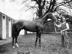 """Omaha 1932 - 1959 Chestnut colt by Gallant Fox – Flambino, by *Wrack  Bred and owned by William Woodward Sr.  From the first crop of Gallant Fox and foaled at Claiborne Farm, Omaha remains as the only Triple Crown winner sired by a Triple Crown winner.  The concept of a """"Triple Crown"""" accomplishment comprising of victories in the Kentucky Derby, Preakness, and Belmont was not acknowledged by name until the father-son duo of Gallant Fox and Omaha."""