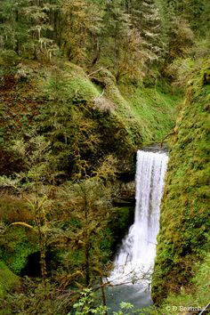 South Falls- Silver Lake Falls State Park, Oregon