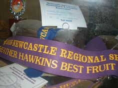 2016 Newcastle Show - Best Fruit Cake in Show, 1st Place Rich Fruit Cake