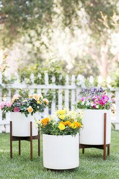 How to Make an Edible Floral Garden! Flowers are the perfect way to add charm to salads, desserts and cocktails!