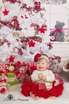 Beary Cozy Christmas ~ Fabric photography backdrop from Baby Dream Backdrops