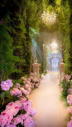 Beautiful Gardens, Beautiful Flowers, Beautiful Places, Nature Aesthetic, Flower Aesthetic, Dream Garden, Aesthetic Pictures, Aesthetic Wallpapers, Backdrops
