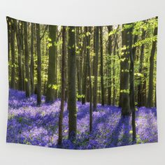 #society6 #tapestry #walltapestry #forest #woods #flowers #sun #green #blue #purple #dslr
