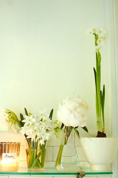 january flowers: paperwhites and peonies