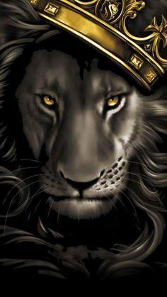 Black and grey lion with gold crown. X OGABEL Poster Og Abel Art, Art Chicano, Lion Painting, Lion Wallpaper, More Wallpaper, Lion Pictures, Lion Images, Leo Lion, Lion Of Judah