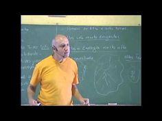 Prof. Laercio Fonseca - Camara de contato com os ETs