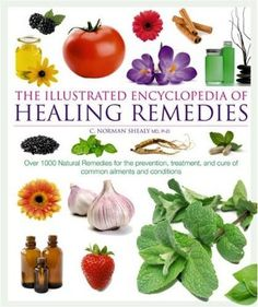~COol & larGE BOok oN Healing REmedies ... GReat bAsic infO ~*