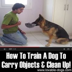 Please Share This Page: Photo – www.youtube.com/watch?v=l1ZajuATmeA Training your dog can be a difficult task, but this video by Training Positive makes it all worth it. In the tutorial, he teaches us how to ask your dog to carry objects and clean up. If you can help your dog learn how to pick up after …