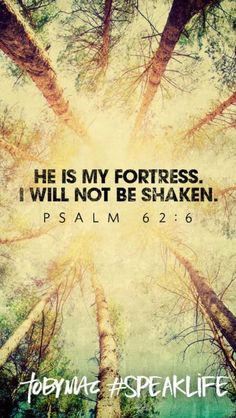 He is my fortress. I will not be shaken. Psalm 62:6                                                                                                                                                                                 More