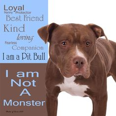 I am not a monster - I am a pit bull.  Loyal Nanny Protector Best Friend Kind Loving Fearless Companion. We owe them so much; I will protect and defend, educate others, share the love, insure there's no room for fear, cuddle and keep until the last breath <3