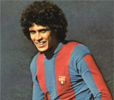 Roberto Dinamite (Foto: reprodução)