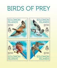 SLM 13709 aBirds of prey of Solomon Islands, (Circus approximans, Pandion haliaetus, Haliastur indus, Falco peregrinus).