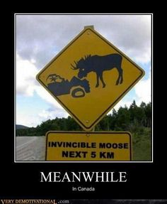 Meanwhile in Canada. - Just For Fun - Meanwhile in Canada. The post Meanwhile in Canada. appeared first on Gag Dad. Car Jokes, Car Humor, Funny Jokes, Hilarious, Funny Sign Fails, Meanwhile In Canada, Funny Road Signs, Funny Warning Signs, Hilarious Pictures