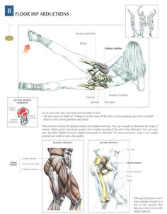 Floor hip abductions help correct pigeon toed running form Hip Workout, Gym Workouts, Circuit Fitness, Coach Sportif, Muscle Anatomy, Bodybuilding, Burpees, Fitness Nutrition, Weight Training
