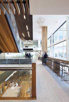 AECOM Workplace Brisbane - Google Search