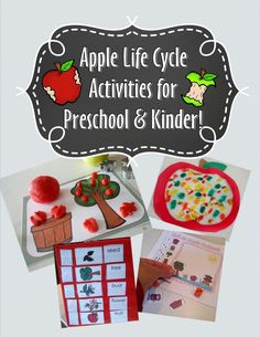 Apple Life Cycle Preschool Packet - apple play dough mats, apple craft, apple sequence, apple game, and more!
