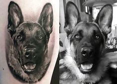 An incredibly photo-realistic portrait of a German Shepherd: 14 Awesomely Beautiful Pet Tribute Tattoos Lion Tattoo, Dog Tattoos, Animal Tattoos, Skull Tattoos, Tatoos, Swag Tattoo, Finger Tattoos, Tattoo Ink, Tattoo Sleeve Designs
