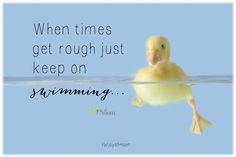 Keep on swimming....