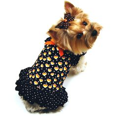 My dog likes this dress.  :)