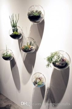 Hanging Wall Glass Fishbowl,bread Shaped Wall Plant/flower Vase,wall Decor,home Decor,house Ornaments,gifts for Friends Terrarium Bubbles Wall Hanging Vase Wall Fishbowl Online with $57.27/Piece on Championcrafts's Store   DHgate.com