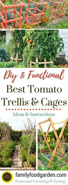 The Most Reliable Tomato Cages + Trellises | Pinterest | Tomato cage ...