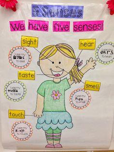 Kindergarten Smiles: Five Senses Anchor Chart Idea