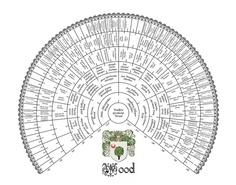Eight Generation Genealogy Fan Chart  Family Tree