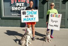 Five years ago, Mindi Callison, founder of Bailing Out Benji, learned that the owner of Dyvig's Pet Shoppe in Ames, Iowa was getting the puppies he sells in his store from two large puppy mills.