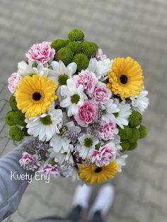 Kvety Eny Plants, Flora, Plant, Planting