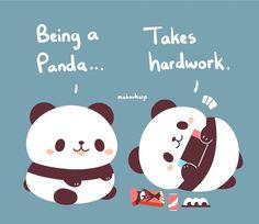 🐼 panda