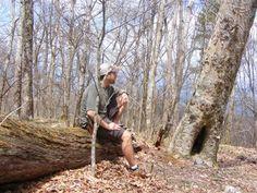 Big Frog Mountain Trail | Ocoee Tennessee Hikes | Trails.com