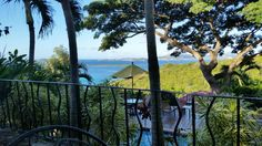 Book Estate Lindholm, St. John on TripAdvisor: See 338 traveler reviews, 330 candid photos, and great deals for Estate Lindholm, ranked #1 of 5 B&Bs / inns in St. John and rated 5 of 5 at TripAdvisor.