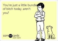 You're just a little bundle of bitch today, aren't you?