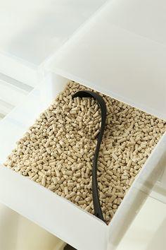 セリア100円お玉で猫砂の補充♪ | ねこインテリアBOOK~猫4匹と心地よい大人のひとり暮らし