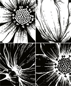 The printmaking flowers vector material  1