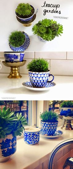 Turn teacups into plant holders, like at my wedding
