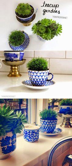 Turn teacups into plant holders