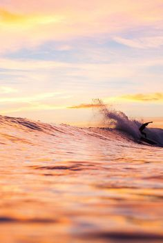 highenoughtoseethesea: Lakey Peterson by Willie Kessel Photography Originally posted by ASPWORLDTOUR