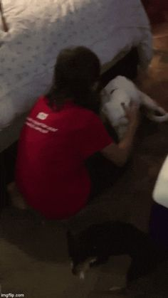 Scared Dog Wakes Up Rescuer In Middle Of Night To Thank Her - The Dodo