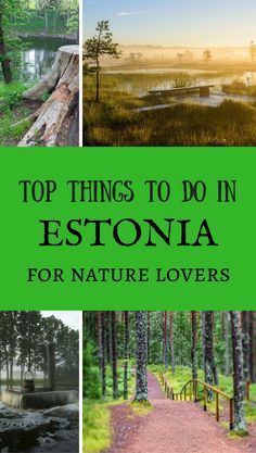 The best natural attractions in Estonia.