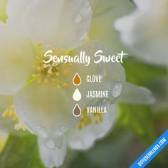 Sensually Sweet - Essential Oil Diffuser Blend