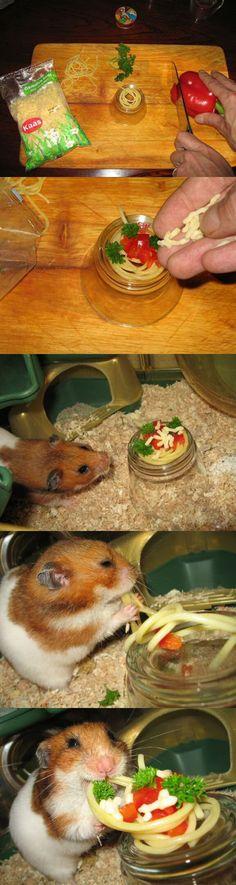 Hamster comiendo pasta.