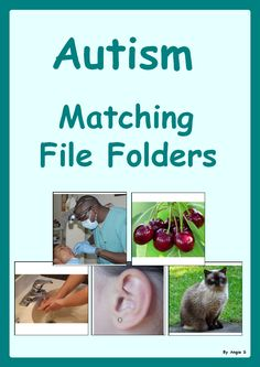 Autism Matching File Folders #autism For more resources follow https://www.pinterest.com/angelajuvic/autism-special-education-resources-angie-s-tpt-sto/