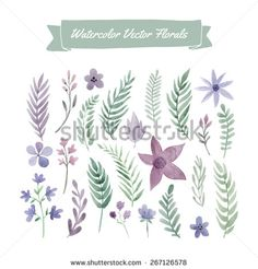 Set of handpainted watercolor vector flowers and leaves. Design element for summer wedding, spring congratulation card. Perfect floral elements for save the date card.