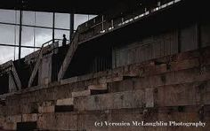 avondale racecourse auckland - Google Search