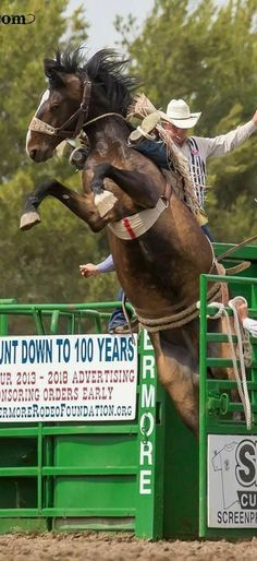 Rodeo Cowgirl, Rodeo Cowboys, Hot Cowboys, Cowgirl Pictures, Horse Pictures, Rodeo Rider, Rodeo Events, Bucking Bulls, Trick Riding