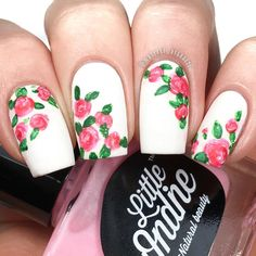 White pink green roses floral