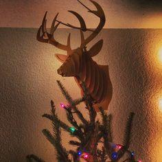 "Kerry Degman: ""The perfect tree angel #elk #redneckchristmas #christmakuh #notjewishtho #wishitwasreal"" - December 3, 2013"
